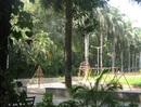 Patwardhan Park