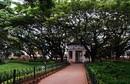 M.N. Krishna Rao Park