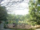 Jayamahal Park