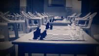 Smart Brains Chess Academy