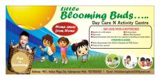 Little Blooming Buds Day Care n Activity Centre
