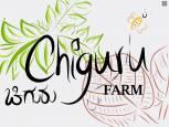 Chiguru Farm