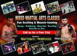 Brawlers mma Gym and Fitness