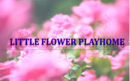 Little Flower Play home