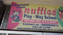 Nutties Play-Way School