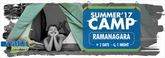 Nature Journey night summer camp at Ramnagar  in Koramangala