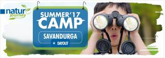 Nature Journey day summer camp at Savanadurga  in Magadi Road